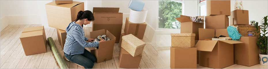 Packers and Movers Mogappair
